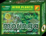MORINGA- 116 tablet, BIO, Afro plants